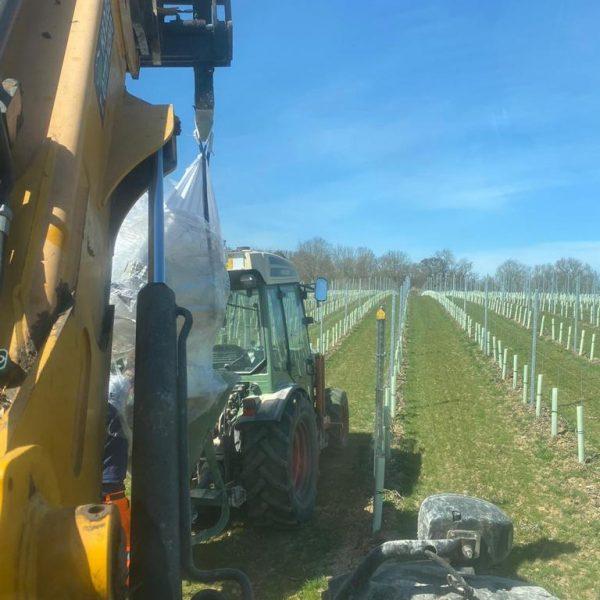 Vinyard Ground Preperation and Maintenance