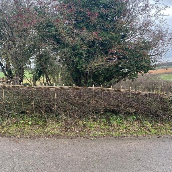 Hedge Laying Service